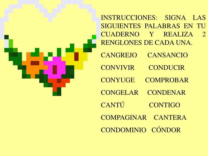 INSTRUCCIONES: SIGNA LAS SIGUIENTES PALABRAS EN TU CUADERNO Y REALIZA 2 RENGLONES DE CADA UNA.