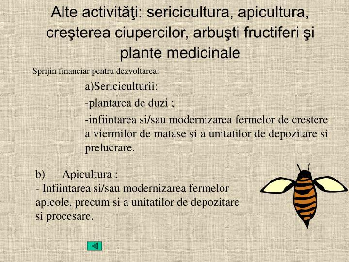 b)      Apicultura :
