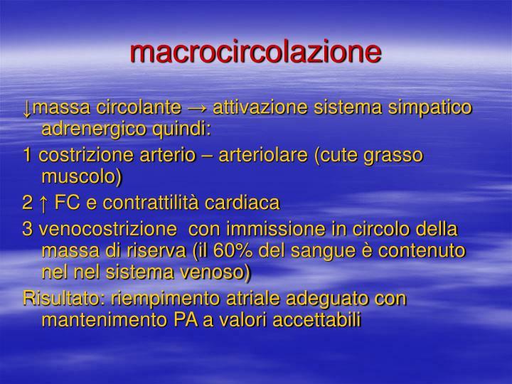 macrocircolazione