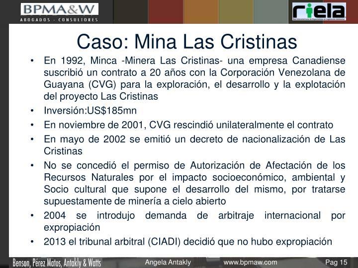 Caso: Mina Las Cristinas