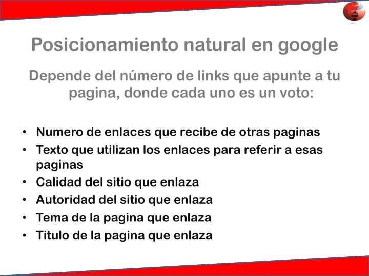 Posicionamiento natural en google