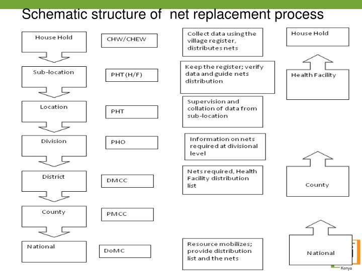 Schematic structure of  net replacement process