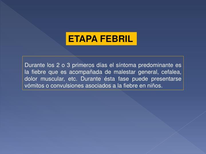 ETAPA FEBRIL