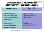 organisert motorisk aktivitet i barnehagen