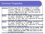 common properties1