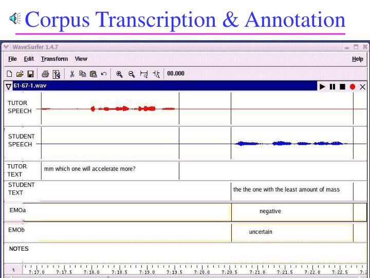 Corpus Transcription & Annotation