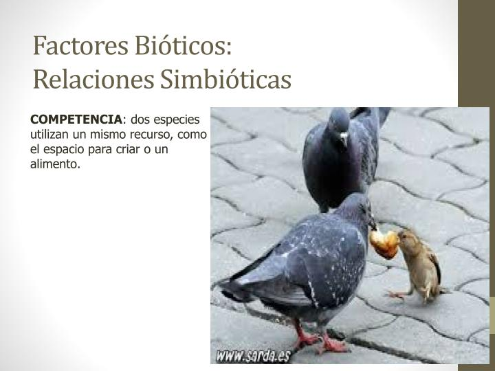 Factores Bióticos: