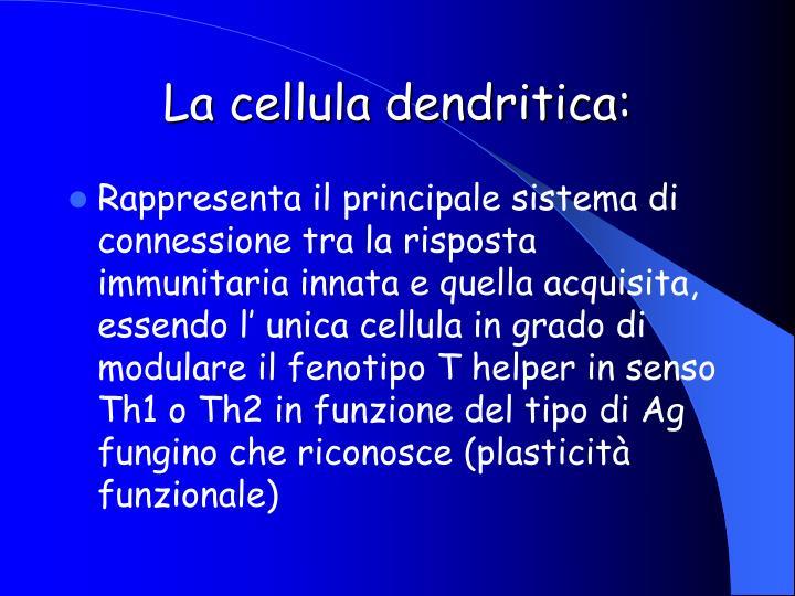 La cellula dendritica: