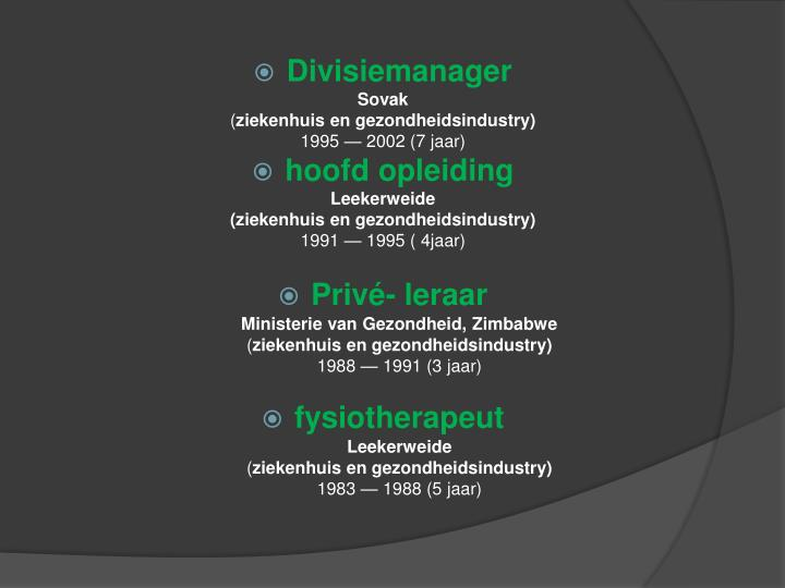 Divisiemanager