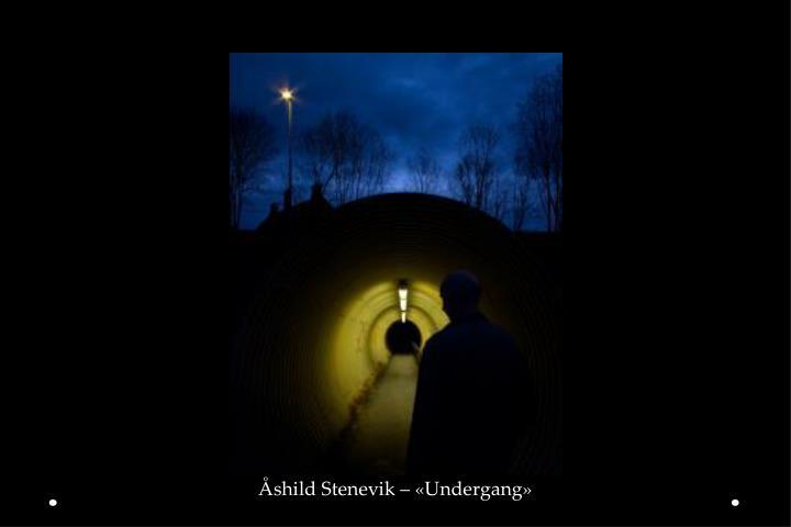 Åshild Stenevik – «Undergang»