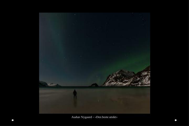 Audun Nygaard – «Den beste utsikt»