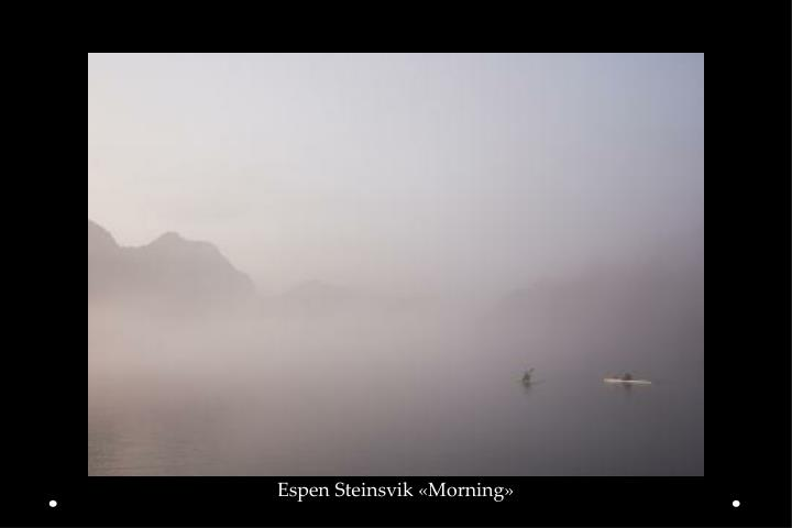 Espen Steinsvik «Morning»