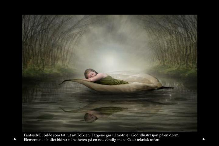 Fantasifullt bilde som tatt ut av Tolkien. Fargene går til motivet. God illustrasjon på en drøm. Elementene i