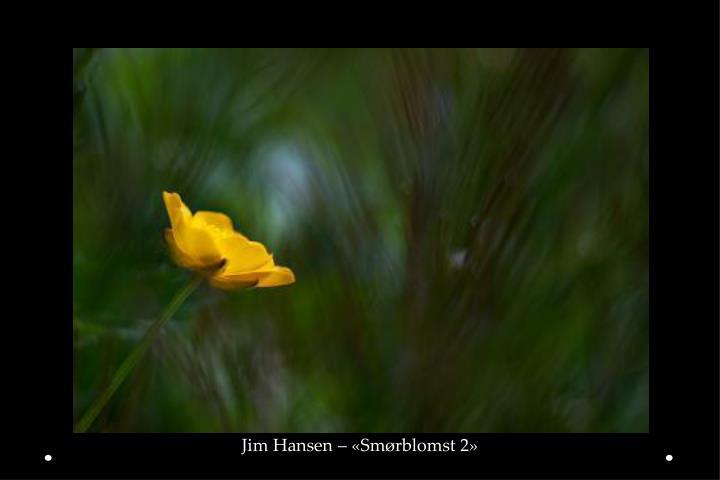 Jim Hansen – «Smørblomst 2»