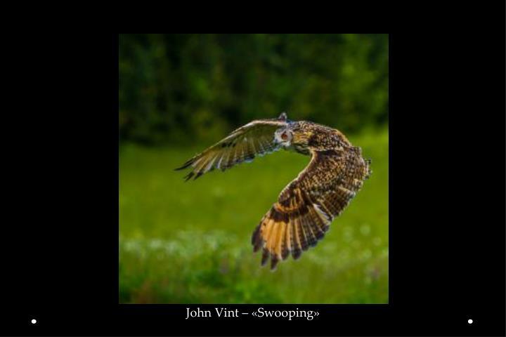 John Vint – «Swooping»