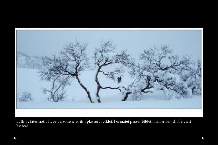 Et fint vintermotiv hvor personene er fint plassert i bildet. Formatet passer bildet, men snøen skulle vært hvitere.