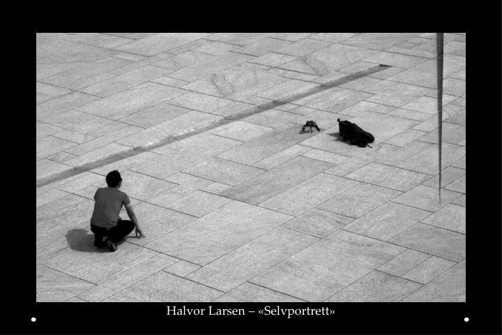 Halvor Larsen – «Selvportrett»