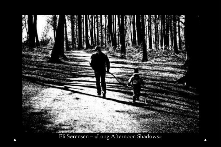Eli Sørensen – «Long Afternoon Shadows»