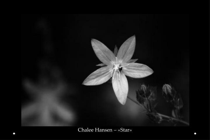 Chalee Hansen – «Star»