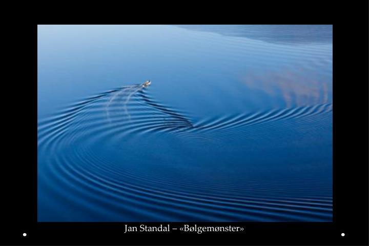 Jan Standal – «Bølgemønster»