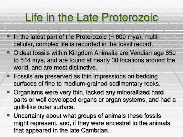Life in the Late Proterozoic
