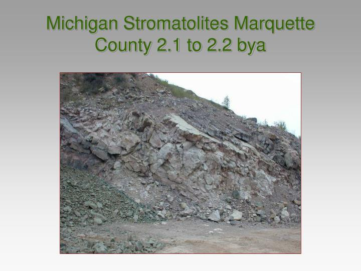 Michigan Stromatolites Marquette County 2.1 to 2.2 bya