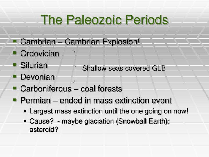 The Paleozoic Periods