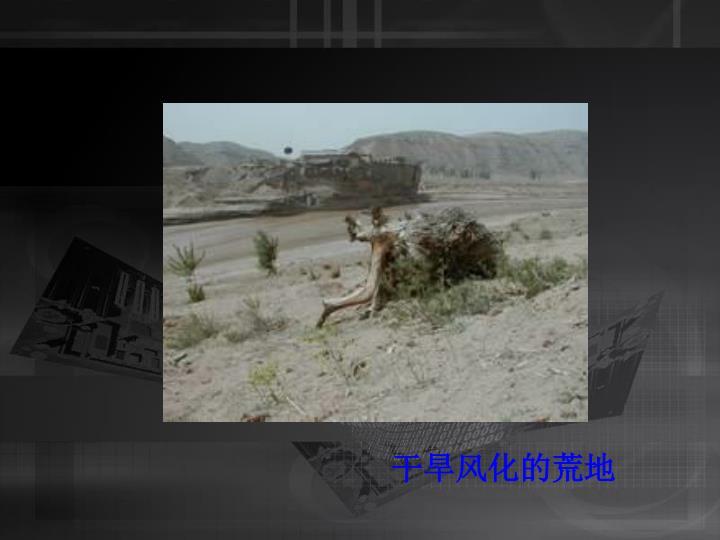 干旱风化的荒地