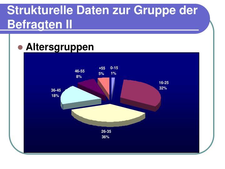 Strukturelle Daten zur Gruppe der Befragten II