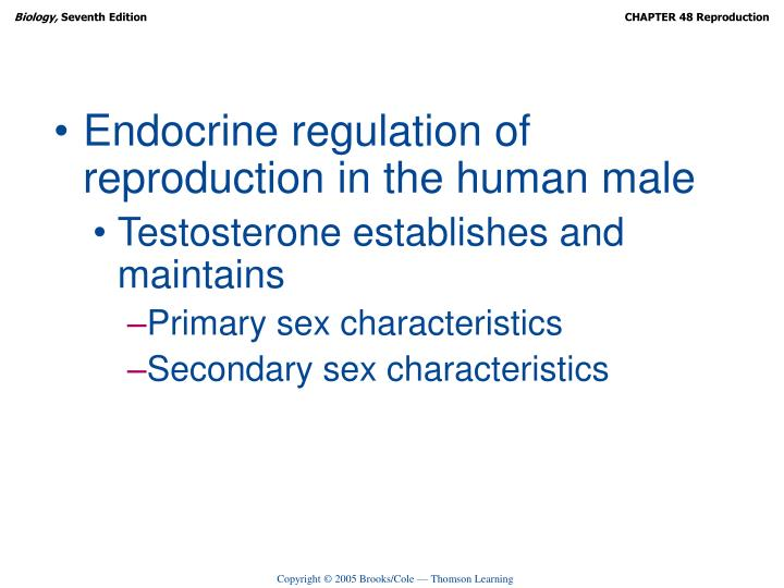Endocrine regulation of reproduction in the human male