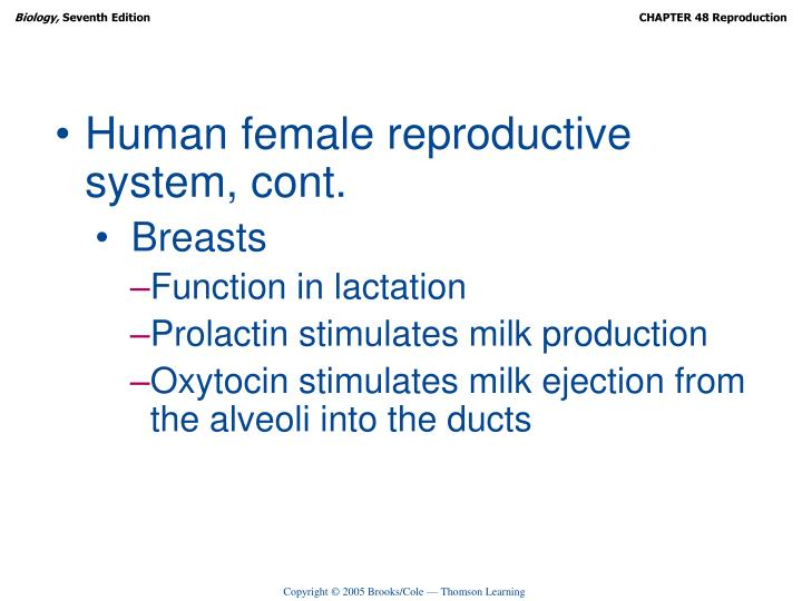 Human female reproductive system, cont.