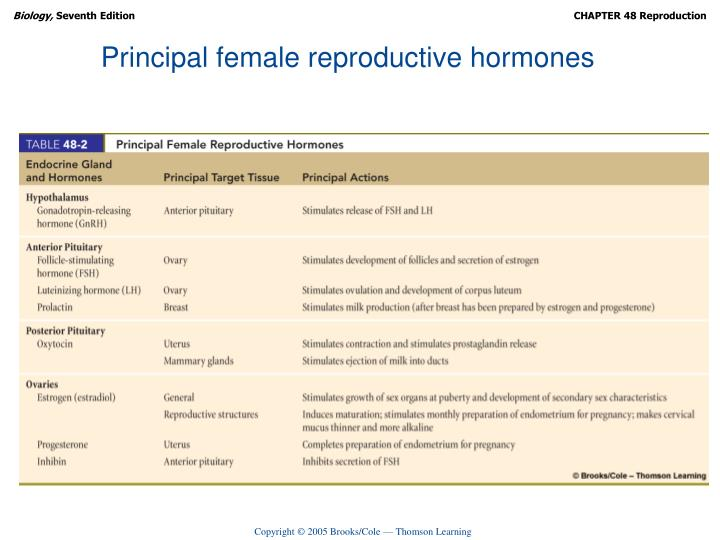 Principal female reproductive hormones