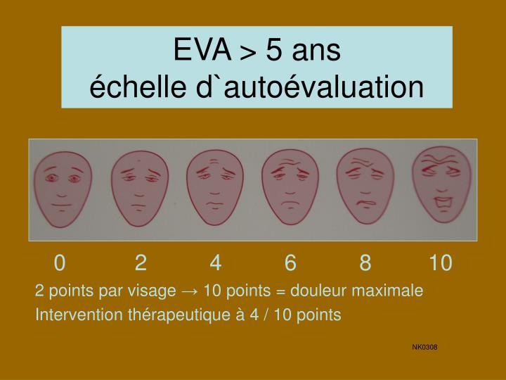 EVA > 5 ans