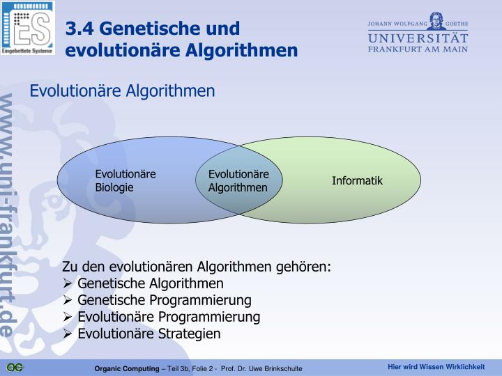 Evolutionäre