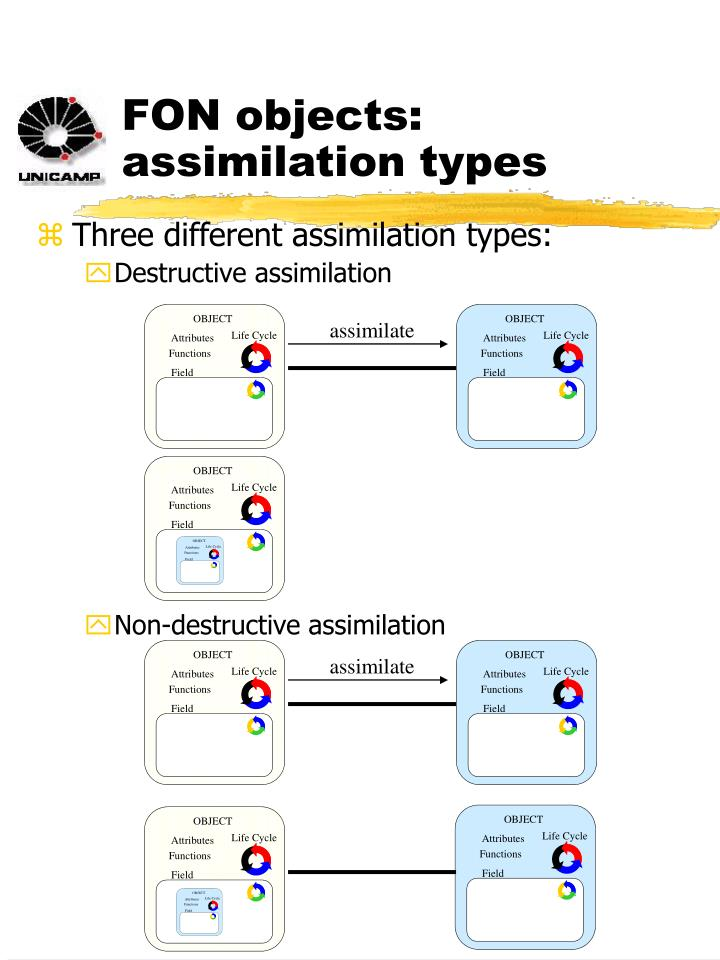FON objects: assimilation types