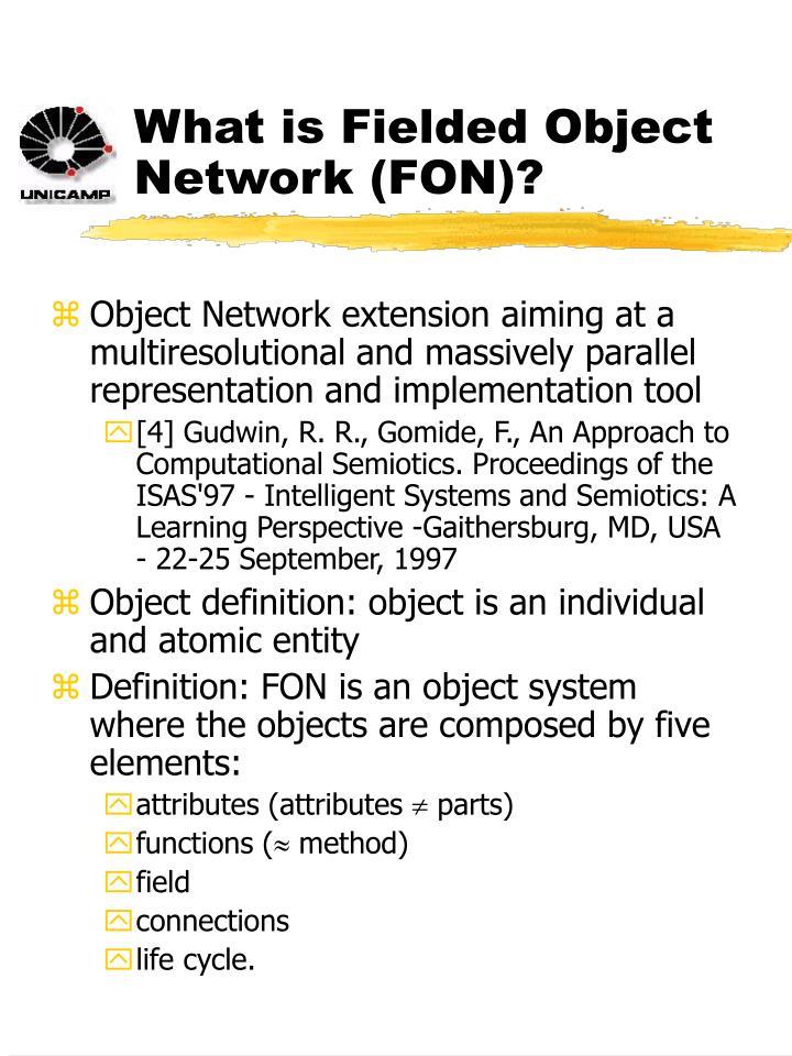 What is Fielded Object Network (FON)?