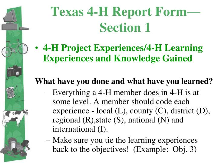 Texas 4-H Report Form—Section 1