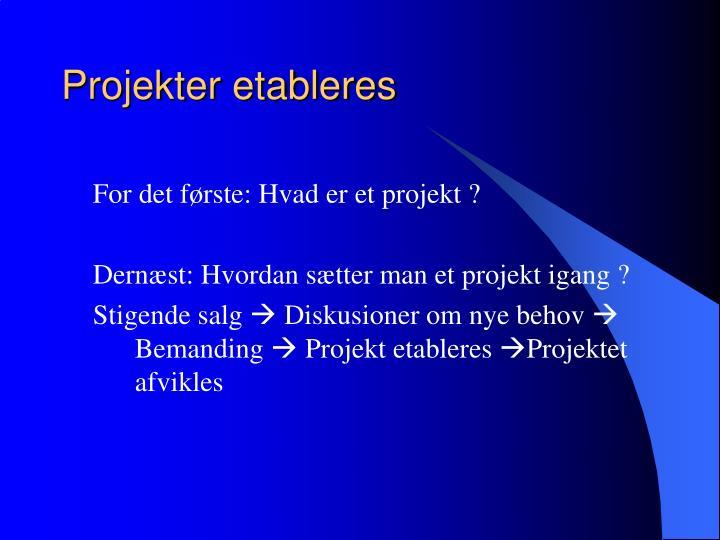 Projekter etableres