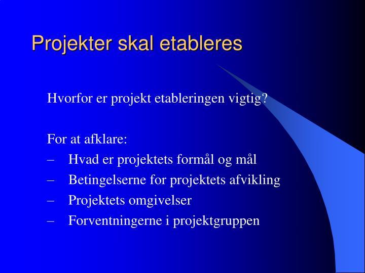 Projekter skal etableres