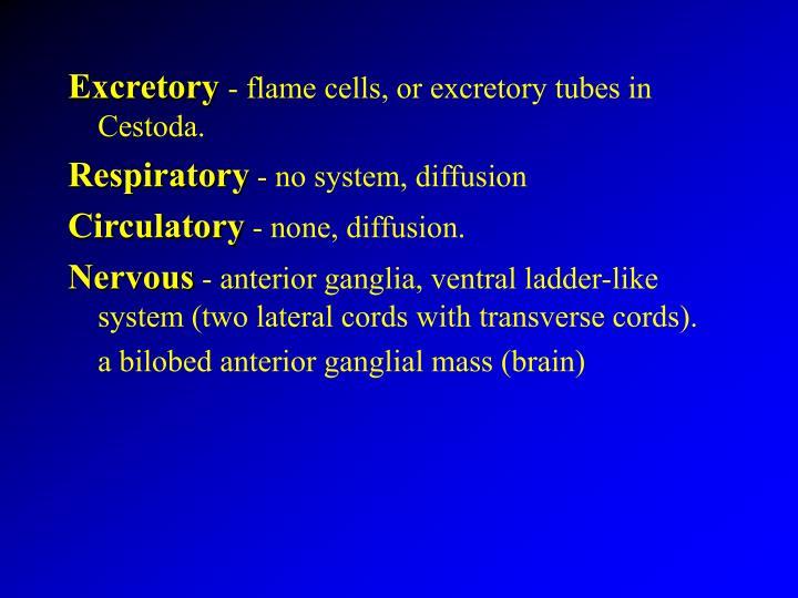 Excretory