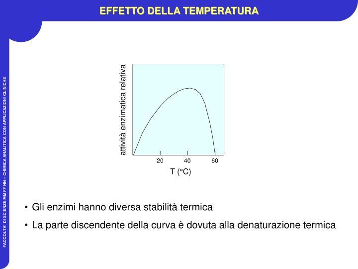 attività enzimatica relativa