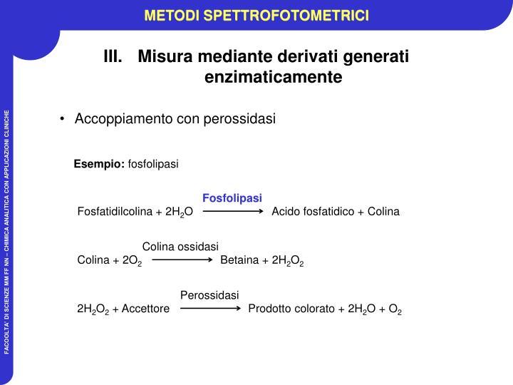 Fosfolipasi