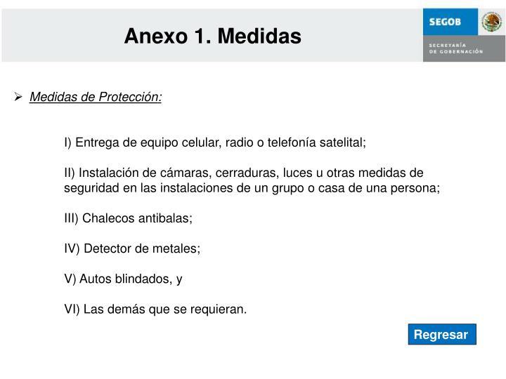 Anexo 1. Medidas