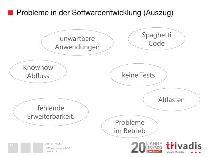 Probleme in der Softwareentwicklung (Auszug)