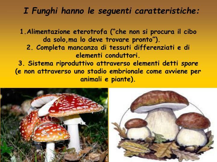 I Funghi hanno le seguenti caratteristiche