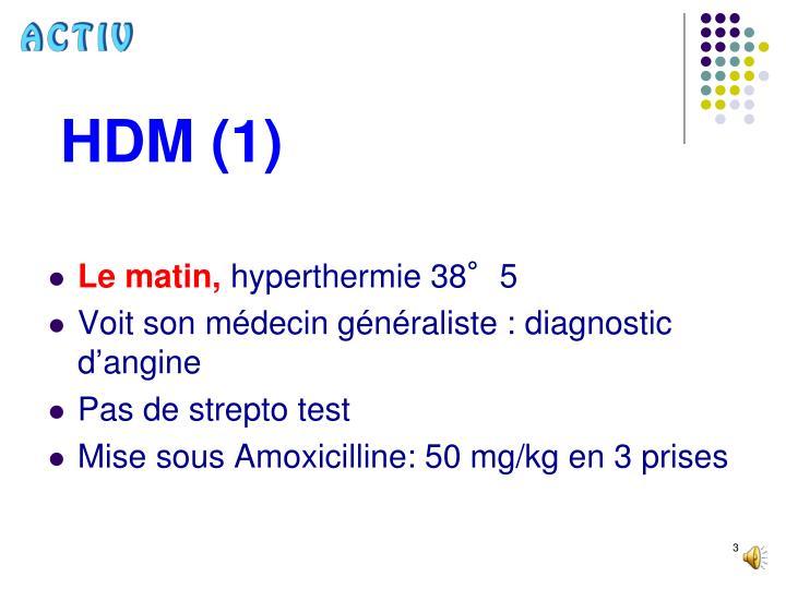 HDM (1)