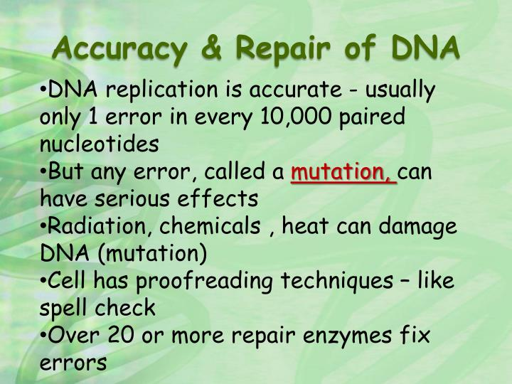 Accuracy & Repair of DNA