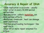 accuracy repair of dna