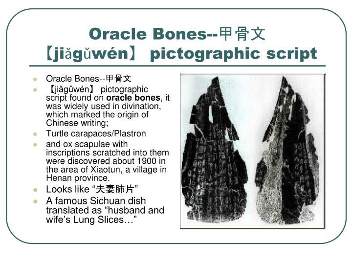 Oracle Bones--甲骨文