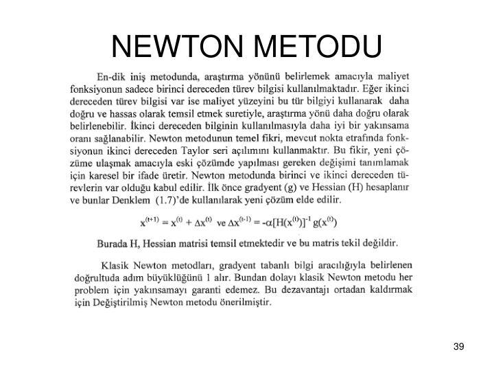 NEWTON METODU